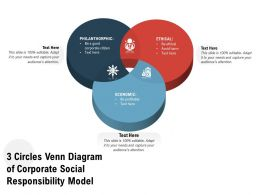 3 Circles Venn Diagram Of Corporate Social Responsibility Model