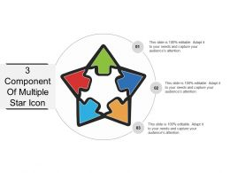 3 Component Of Multiple Star Icon Example Of PPT