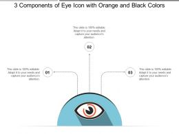 3 Components Of Eye Icon With Orange And Black Colors