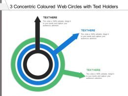 3 Concentric Coloured Web Circles With Text Holders