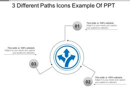 3 Different Paths Icons Example Of Ppt