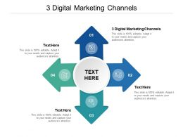 3 Digital Marketing Channels Ppt Powerpoint Presentation Ideas Show Cpb