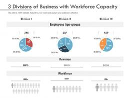3 Divisions Of Business With Workforce Capacity