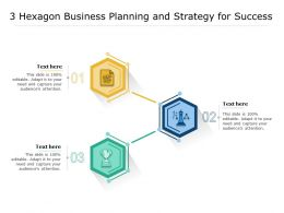 3 Hexagon Business Planning And Strategy For Success
