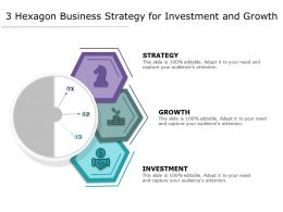 3 Hexagon Business Strategy For Investment And Growth
