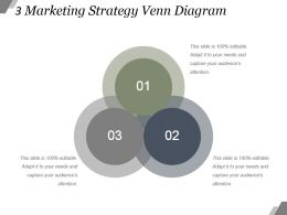 3 Marketing Strategy Venn Diagram Example Of Ppt