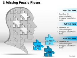 3 Missing Puzzle Pieces