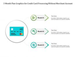 3 Month Plan Graphics For Credit Card Processing Without Merchant Account Infographic Template
