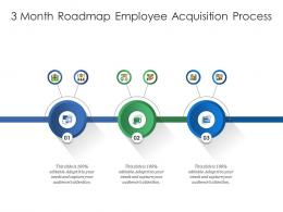 3 Month Roadmap Employee Acquisition Process Infographic Template
