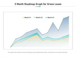 3 Month Roadmap Graph For Gross Lease Infographic Template