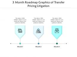 3 Month Roadmap Graphics Of Transfer Pricing Litigation Infographic Template