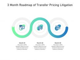 3 Month Roadmap Of Transfer Pricing Litigation Infographic Template