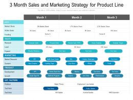 3 Month Sales And Marketing Strategy For Product Line