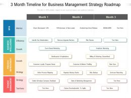 3 Month Timeline For Business Management Strategy Roadmap