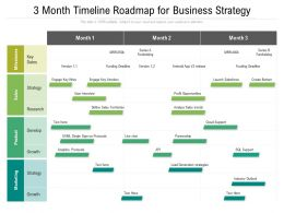 3 Month Timeline Roadmap For Business Strategy