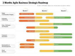 3 Months Agile Business Strategic Roadmap