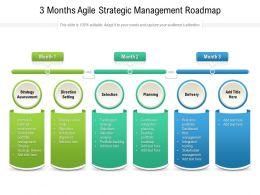 3 Months Agile Strategic Management Roadmap