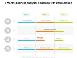 3 Months Business Analytics Roadmap With Data Science