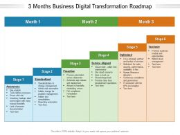3 Months Business Digital Transformation Roadmap