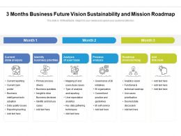 3 Months Business Future Vision Sustainability And Mission Roadmap