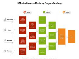 3 Months Business Mentoring Program Roadmap