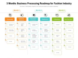 3 Months Business Processing Roadmap For Fashion Industry