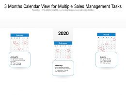 3 Months Calendar View For Multiple Sales Management Tasks