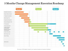 3 Months Change Management Execution Roadmap