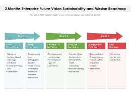 3 Months Enterprise Future Vision Sustainability And Mission Roadmap