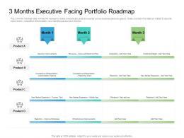 3 Months Executive Facing Portfolio Roadmap Timeline Powerpoint Template