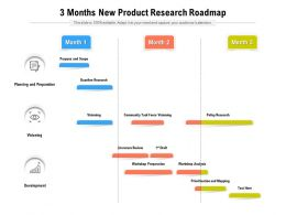 3 Months New Product Research Roadmap