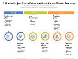 3 Months Project Future Vision Sustainability And Mission Roadmap