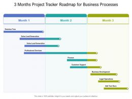 3 Months Project Tracker Roadmap For Business Processes