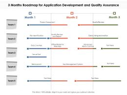 3 Months Roadmap For Application Development And Quality Assurance