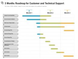 3 Months Roadmap For Customer And Technical Support