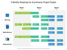 3 Months Roadmap For Ecommerce Project Tracker