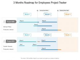 3 Months Roadmap For Employees Project Tracker