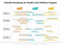 3 Months Roadmap For Health Care Initiative Program