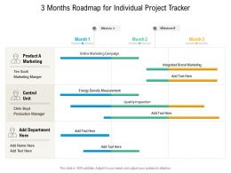 3 Months Roadmap For Individual Project Tracker