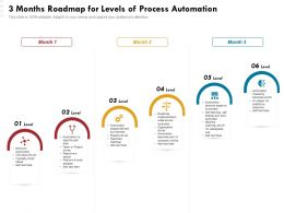 3 Months Roadmap For Levels Of Process Automation