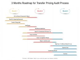 3 Months Roadmap For Transfer Pricing Audit Process
