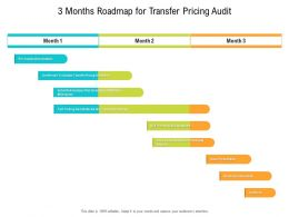 3 Months Roadmap For Transfer Pricing Audit