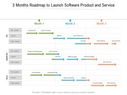 3 Months Roadmap To Launch Software Product And Service