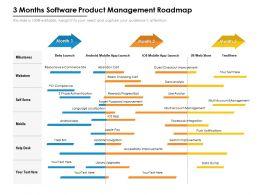 3 Months Software Product Management Roadmap