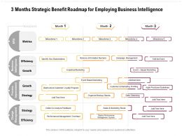 3 Months Strategic Benefit Roadmap For Employing Business Intelligence