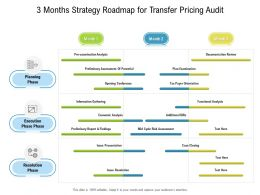3 Months Strategy Roadmap For Transfer Pricing Audit
