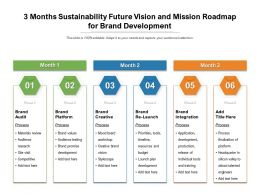 3 Months Sustainability Future Vision And Mission Roadmap For Brand Development