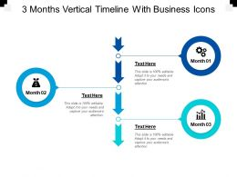 3 Months Vertical Timeline With Business Icons