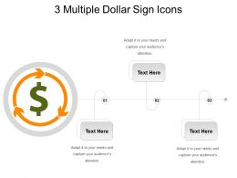 3 Multiple Dollar Sign Icons Powerpoint Slide Rules
