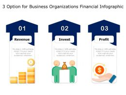 3 Option For Business Organizations Financial Infographic
